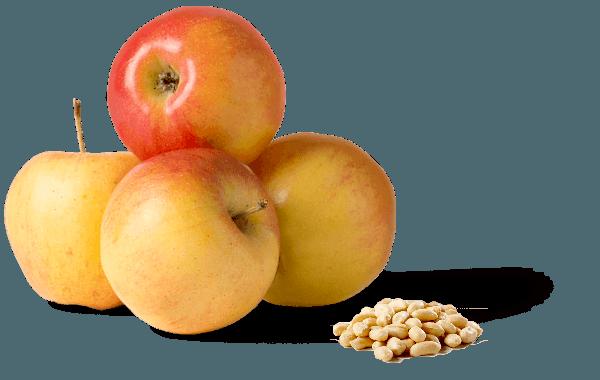 comparatie calrii alune vs mere