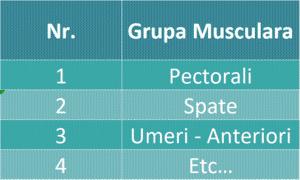 Exemplu tabel grupe musculare