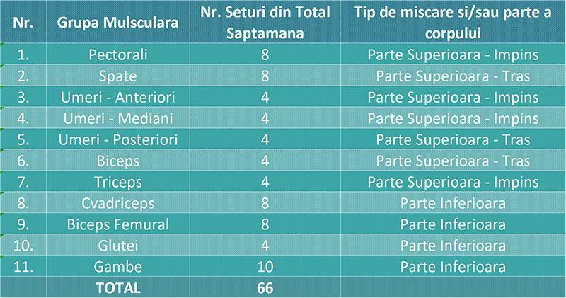 exemplu tabel grupe musculare definite dupa specificul miscarii