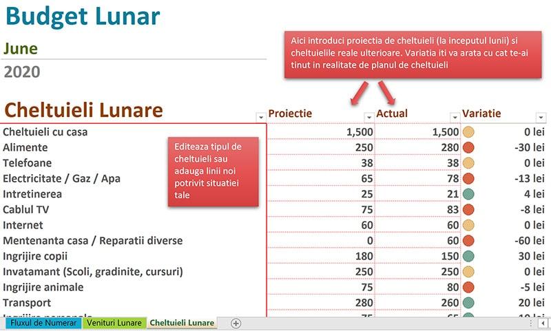 sectiunea de cheltuieli detaliate a bugetului lunar